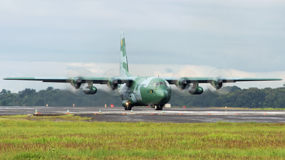 A picture of FAB2473 - Lockheed C130H Hercules -  - © Thyago Thomas - AirTeamImages