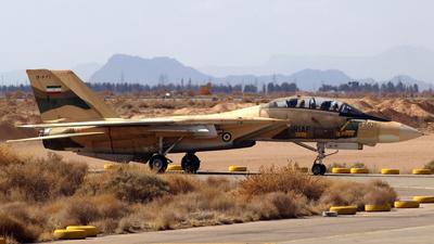 3-6039 - Grumman F-14A Tomcat - Iran - Air Force