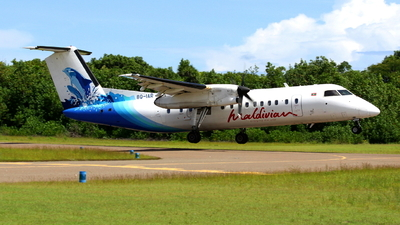 A picture of 8QIAR - De Havilland Canada Dash 8300 - Maldivian - © Domi Einert