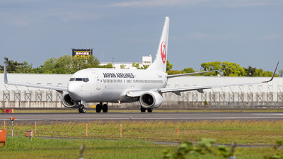 JA309J - Boeing 737-846 - Japan Airlines (JAL)