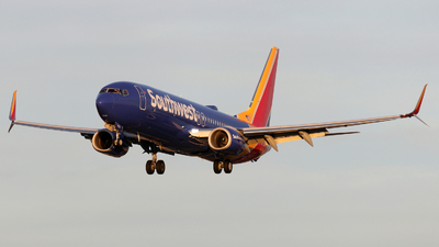 N8696E - Boeing 737-8H4 - Southwest Airlines