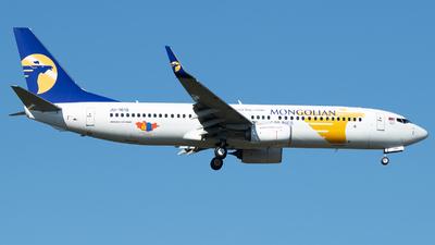 JU-1015 - Boeing 737-8SH - MIAT Mongolian Airlines