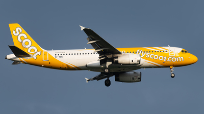 A picture of 9VTAN - Airbus A320232 - Scoot - © Andrew Hunt