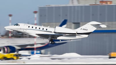 D-BAVG - Cessna 750 Citation X - Private
