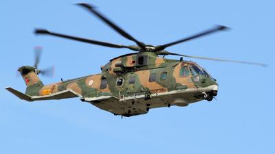 19609 - Agusta-Westland EH-101 Merlin - Portugal - Air Force
