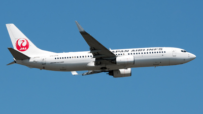 JA310J - Boeing 737-846 - Japan Airlines (JAL)