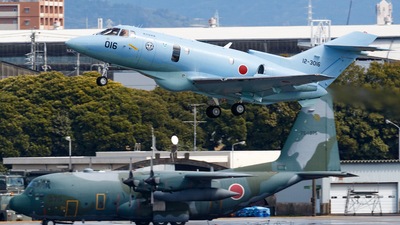 12-3016 - Raytheon U-125A - Japan - Air Self Defence Force (JASDF)