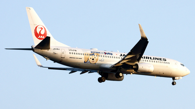 JA318J - Boeing 737-846 - Japan Airlines (JAL)