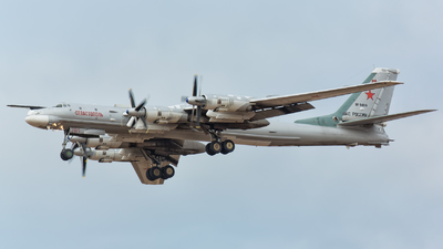 RF-94116 - Tupolev Tu-95 Bear - Russia - Air Force