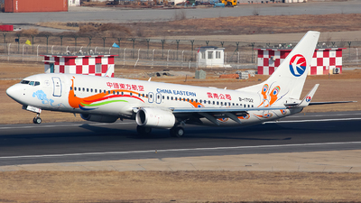 B-1702 - Boeing 737-89P - China Eastern Airlines