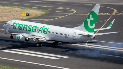 A picture of FGZHR - Boeing 7378K2 - Transavia - © Thomas A. Ferreira