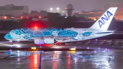 A picture of JA382A - Airbus A380841 - All Nippon Airways - © Sweet Potato