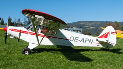 OE-APN - Piper PA-18-105 Super Cub - Untitled