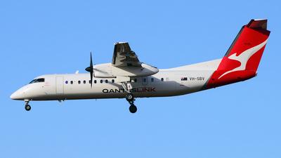 VH-SBV - Bombardier Dash 8-Q315 - QantasLink (Eastern Australia Airlines)