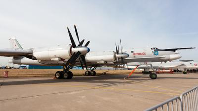 RF-94130 - Tupolev Tu-95 Bear - Russia - Air Force