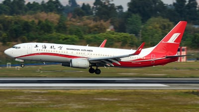 A picture of B207G - Boeing 73789P - Shanghai Airlines - © F3E1988