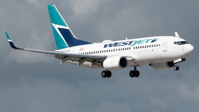 A picture of CFKIW - Boeing 7377CT - WestJet - © Matthew Calise
