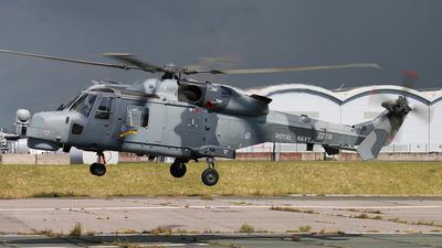 ZZ381 - Agusta-Westland AW-159 Wildcat HMA2 - United Kingdom - Royal Navy