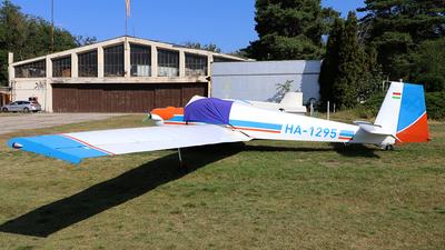 HA-1295 - Scheibe SF.25B Falke - Private