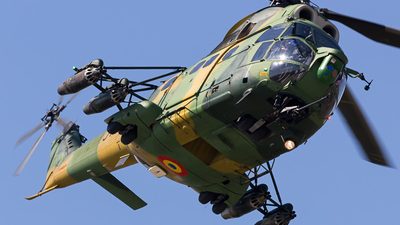 31 - IAR-330L Puma SOCAT - Romania - Air Force