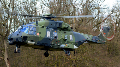 79-18 - NH Industries NH-90TTH - Germany - Army