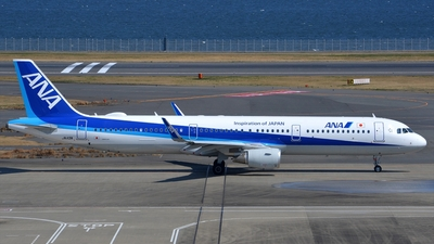 JA113A - Airbus A321-211 - All Nippon Airways (ANA)
