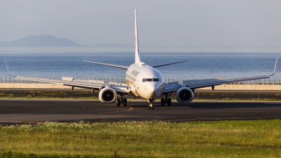JA331J - Boeing 737-846 - Japan Airlines (JAL)