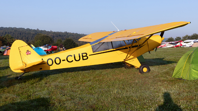 OO-CUB - Piper L-21B Super Cub - Private