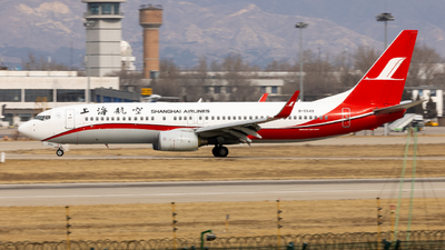 A picture of B5549 - Boeing 73786N - Shanghai Airlines - © WYANG0520