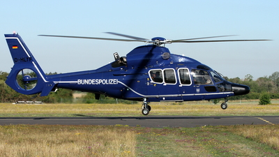 D-HLTF - Eurocopter EC 155B1 Dauphin - Germany - Bundespolizei