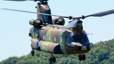 HT.17-05 - Boeing CH-47D Chinook - Spain - Army