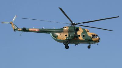 704 - Mil Mi-17 Hip - Hungary - Air Force