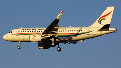 A picture of B000L - Airbus A320 - Airbus - © Memory of the Winter