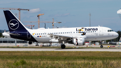 A picture of DAILU - Airbus A319114 - Lufthansa - © Tim Donell
