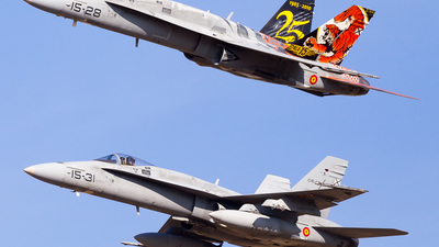 C.15-41 - McDonnell Douglas EF-18A+ Hornet - Spain - Air Force