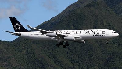 D-AIGN - Airbus A340-313X - Lufthansa