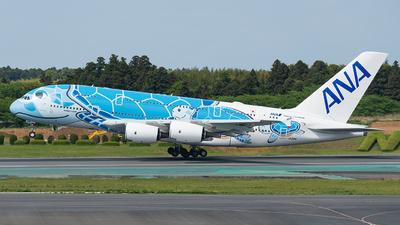 JA381A - Airbus A380-841 - All Nippon Airways (ANA)