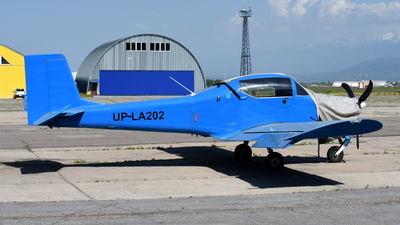 UP-LA202 - Aerostar Bacau Festival R40FS - Private