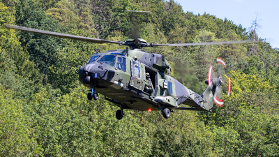 79-12 - NH Industries NH-90TTH - Germany - Army