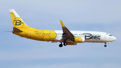 UR-UBA - Boeing 737-8HX - Bees Airline