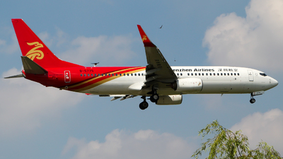 A picture of B5775 - Boeing 73787L - Shenzhen Airlines - © Wayne Song