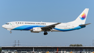 B-5313 - Boeing 737-8Q8 - Donghai Airlines