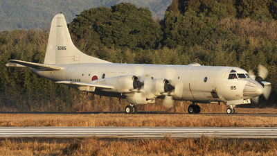 5085 - Lockheed P-3C Orion - Japan - Maritime Self Defence Force (JMSDF)