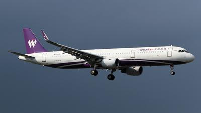 B-321T - Airbus A321-211 - West Air