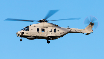 79-55 - NH Industries NH-90NTH Sea Lion - Germany - Navy