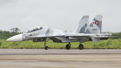 1265 - Sukhoi Su-30MK2 - Venezuela - Air Force