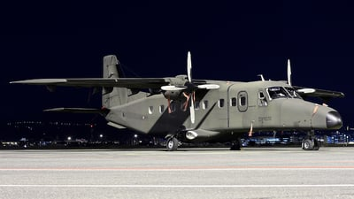 MM62158 - Dornier Do-228-212 - Italy - Army