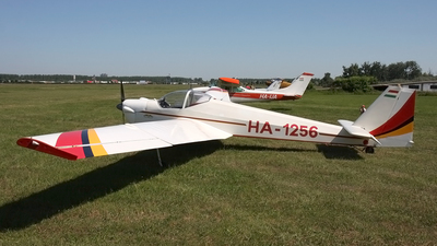HA-1256 - Scheibe SF.25E Super Falke - Private