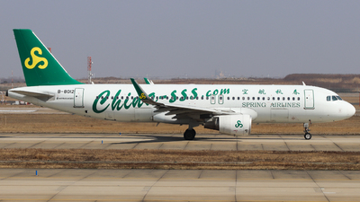 A picture of B8012 - Airbus A320214 - Spring Airlines - © Charlie-Aviationphotography