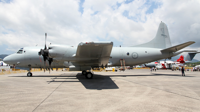 A9-751 - Lockheed P-3C Orion - Australia - Royal Australian Air Force (RAAF)